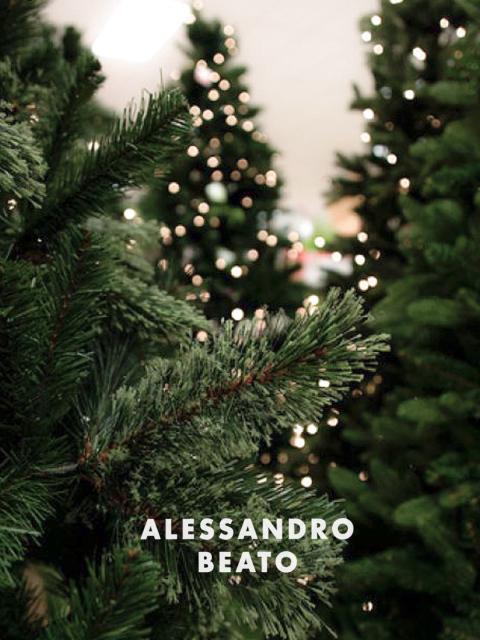 Alessandro Beato collection